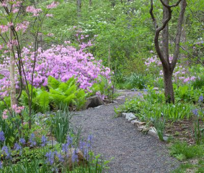 Chanticleer Garden in Wayne, PA